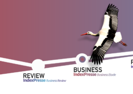 Indexpresse Business Etudes